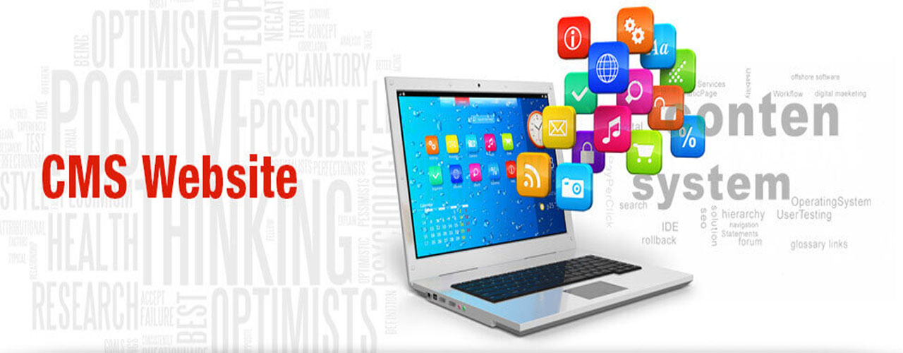 CMS Website Development in Raipur, Bhilai, Bilaspur, Chhattisgarh, INDIA