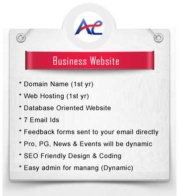 business website packages